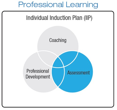 Professional Learning Individual Induction Plan